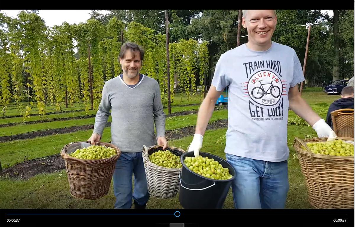 Still van filmpje hopoogst van Bierevents/Hopveld De Molen