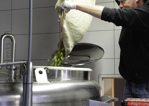 De opbrengst van de hopoogst 2015 verdwijnt in de ketels bij Brouwerij De Molen