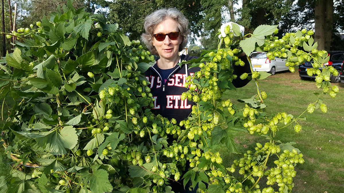 Gerda Wesselink is hopvrijwilliger van het eerste uur. En ze doet het met veel plezier!